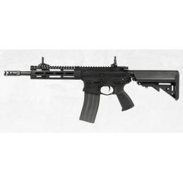 CM16 Raider 2.0 G&G