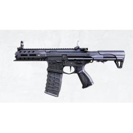 ARP556 V2S G&G